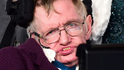Stephen Hawking items to go on sale