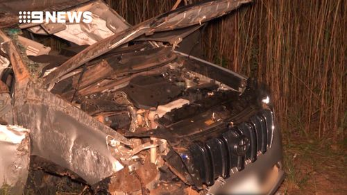 Police say alcohol is unlikely to have been behind the crash. (9NEWS)