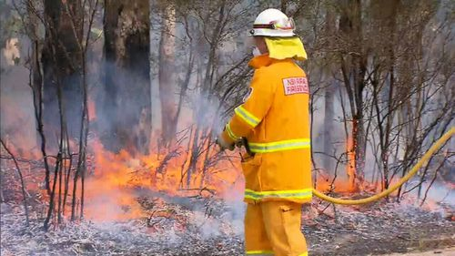 Flames ripped through more than 3000 hectares of land in her electorate. (AAP)
