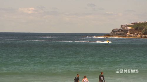 Maroubra Beach was closed today after a shark was spotted in the water.