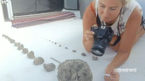 Larissa Brill collecting samples.