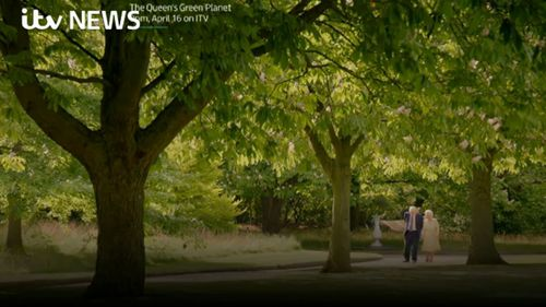 The pair walk around the grounds of Buckingham Palace. (ITV/Supplied)