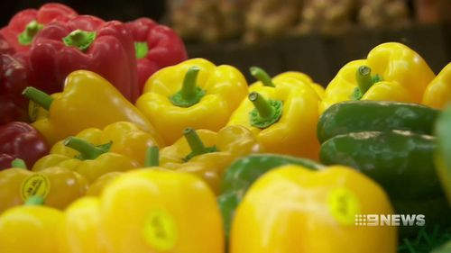 Hot growing conditions have seen a reduced capsicum harvest this year.