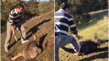 Man charged over disturbing video of kangaroo's throat being slashed
