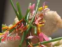 Tempura garden vegetables with salsa verde and chilli oil