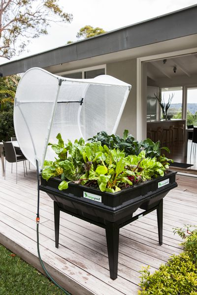 1. Grow your own food