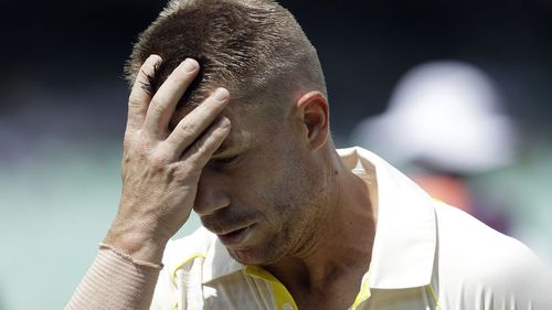 Warner has been banned from representing Australia for 12 months. (AAP)