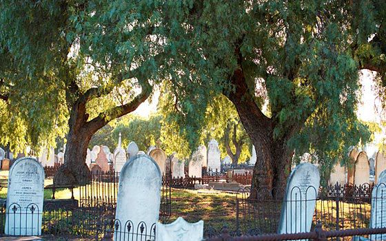 Melbourne General Cemetery (supplied)