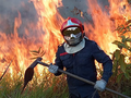 Humans are responsible for '99 percent' of the fires ripping through the Amazon