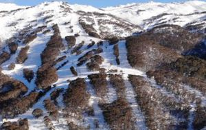 Father and daughter safe and well after rescue in Thredbo ski resort