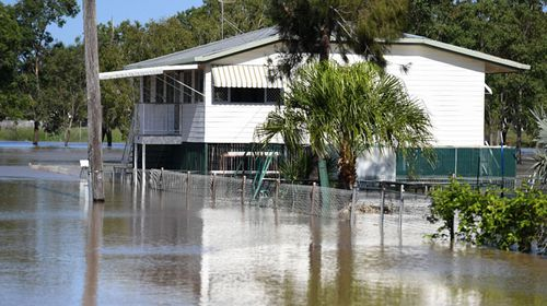 Rocky homes at risk as Fitzroy river rises