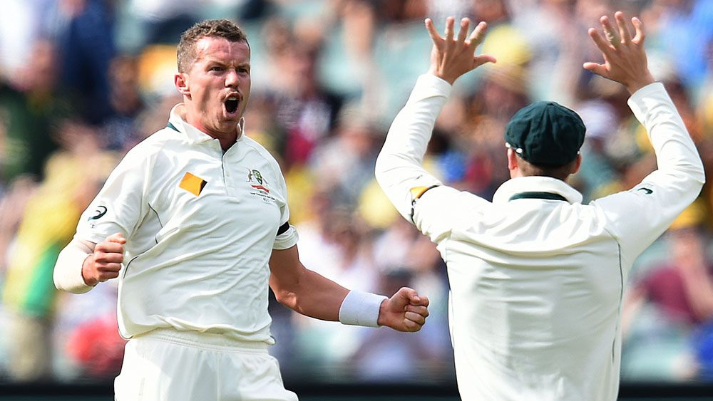 Peter Siddle celebrates a wicket against the West Indies. (AAP)