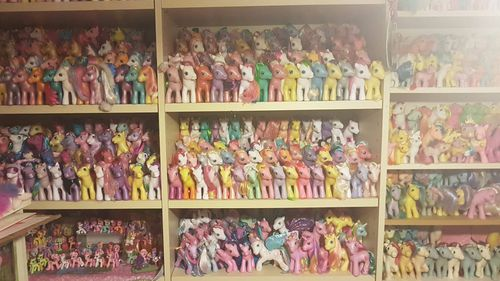 The bookshelves in Ms Moore's spare-room are vacant of books but filled with her My Little Pony collection.