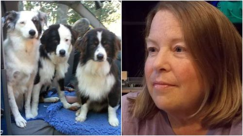 US woman diagnosed with terminal cancer finds new home for her beloved dogs