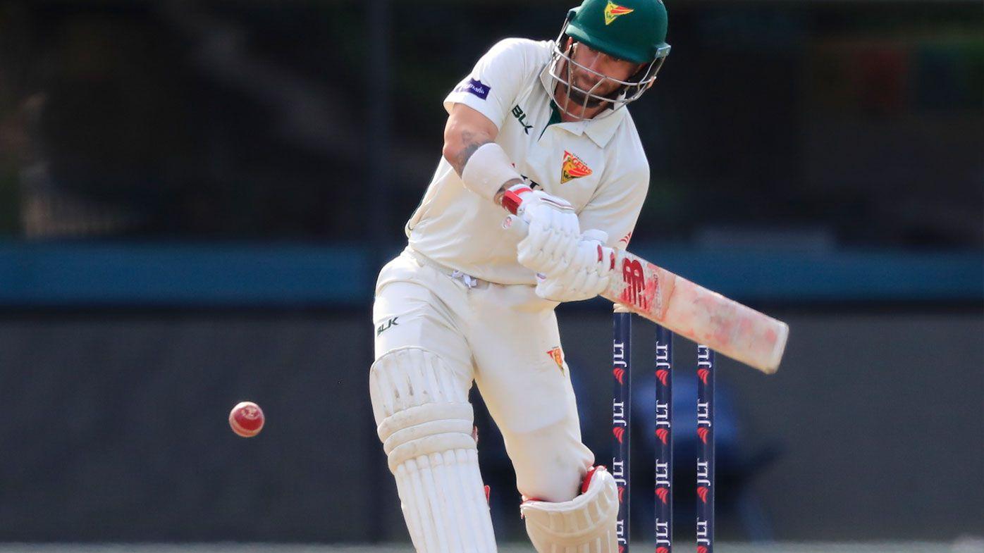 Cricket: Matthew Wade Sheffield Shield ton reignites Ashes bid