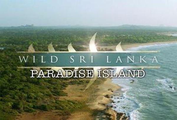 Wild Sri Lanka: Paradise Island