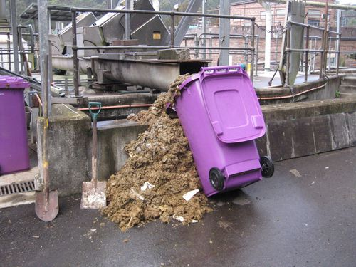 More wipes taken from Sydney's system. (Sydney Water)