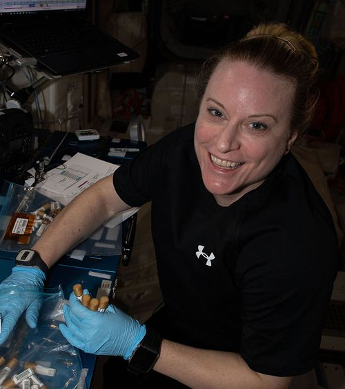 NASA astronaut Kate Rubins collects tubes containing swab samples of microbes on the space station.