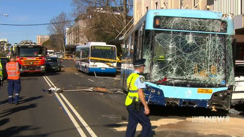 A Sydney bus driver who crashed into pedestrians and cars in 2016 had a history of seizures and shouldn't have had a licence, an investigation has found.
