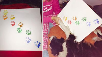 One of the last items Blaze completed before his death was some paw print artwork. (Facebook)