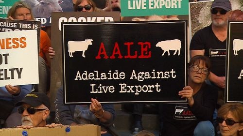 Hundreds of people have rallied in South Australia, protesting live exporting.
