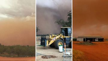 NSW dust storm thunderstorm weather
