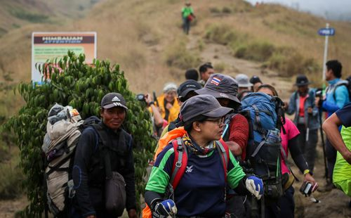 A group of over 500 hikers were rescued from a volcano. Image: AAP