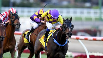 Jockey Chris Caserta riding Jolie's Cafe, leads the field to win race 3 the 1600m Ellar Classic Handicap, during the Ladbrokes Friday Night Lights at Moonee Valley Racecourse in Melbourne. (AAP)