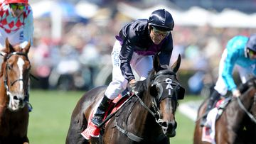Jockey Damian Oliver rode Gai Waterhouse-trained Fiorente to a third Cup victory. (AAP)