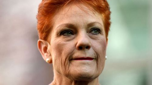 Senator Pauline Hanson has reneged on an agreement to support the cuts, costing her Mr Burston's senate seat.