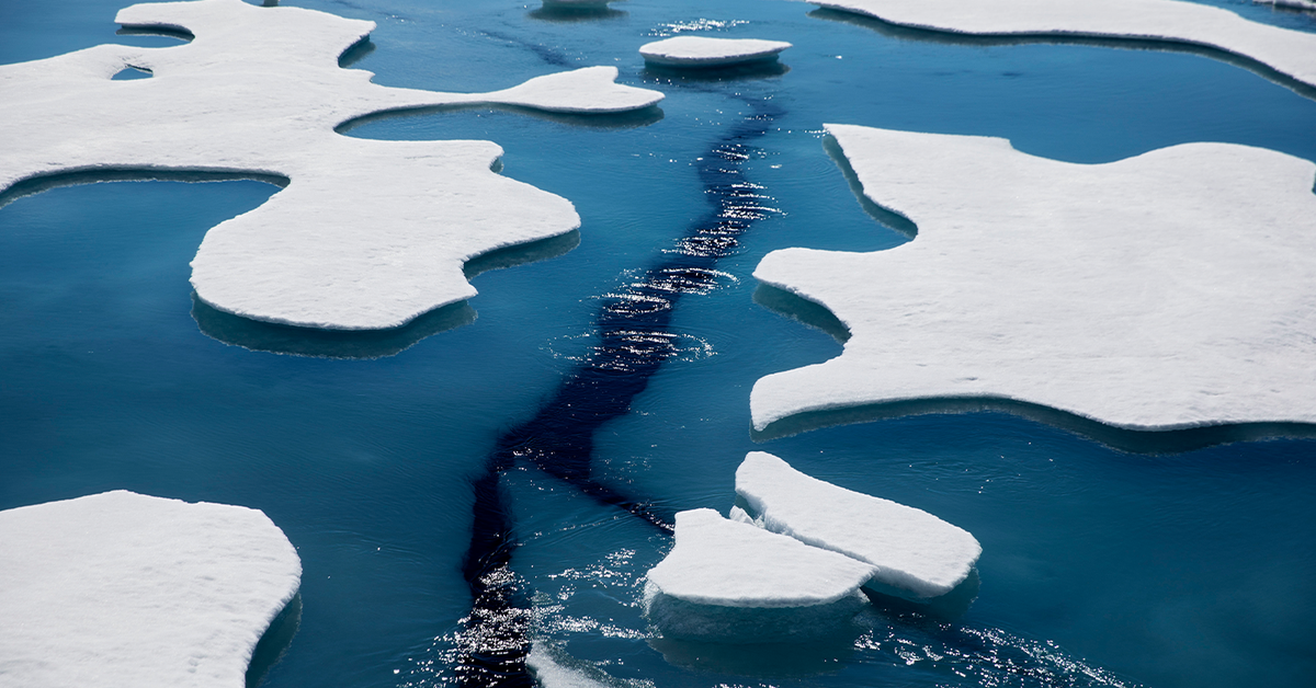 Warming shrinks Arctic Ocean ice to second lowest level on record – 9News