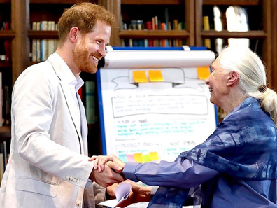 Prince Harry and Dr. Jane Goodall.