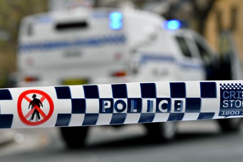 Girl, 14, charged with Adelaide school stabbing allegedly had a list of other targets