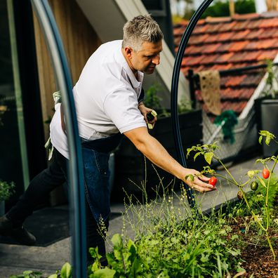 Massimo Mele in his urban vegetable garden at home in Hobart.