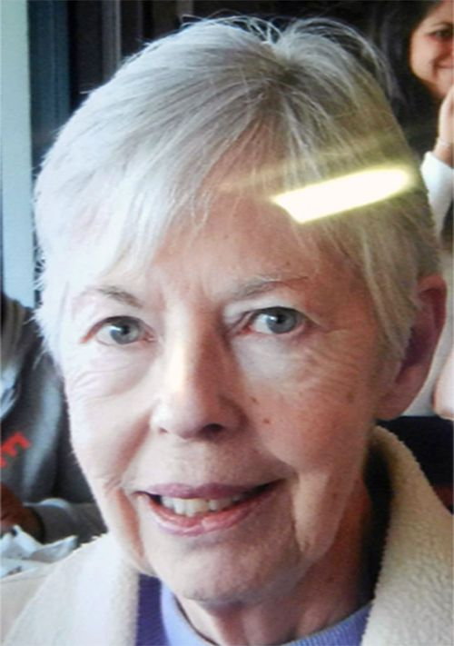 Police resume search for elderly woman missing in Blue Mountains since Monday