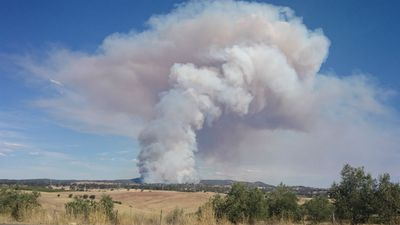 Smoke rising over regional South Australia. (Supplied, India Trestrail)