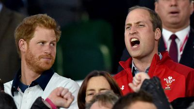 Prince Harry watches Prince William cheering at the Rugby World Cup, 2015