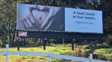 The billboard pictured beside the Pacific Highway in Belmont North, Lake Macquarie.