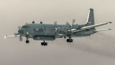 UN calls for calm after Russian plane is downed
