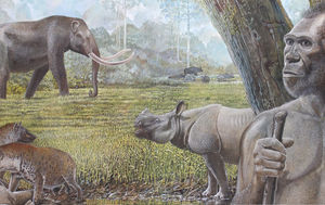 It was growing rainforests, not humans, that killed off Southeast Asia's giant hyenas and other megafauna