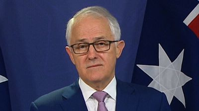 Turnbull launches 'extraordinary' attack ahead of Bennelong by-election