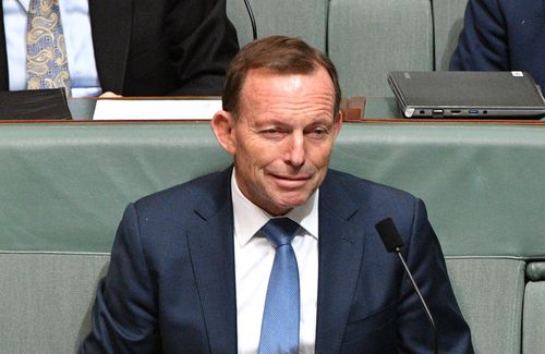 Former prime minister Tony Abbott has continued to speak out on the NEG.