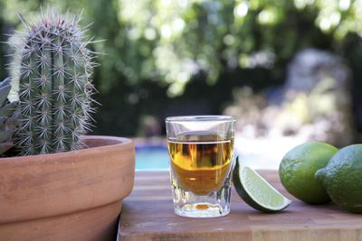 <strong>2. Tequila shots</strong>