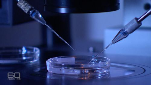 Embryo donation is rare, with just 77 babies born from the IVF process last year. (60 Minutes)