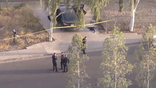 News USA Phoenix fatal road rage shooting girl 10 killed home driveway