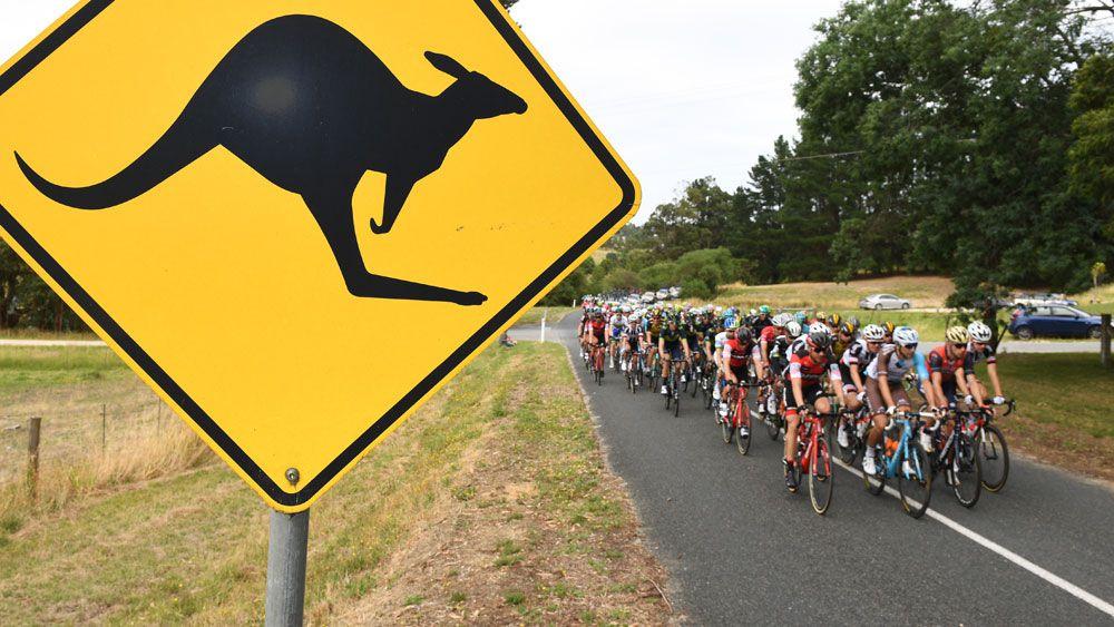 The Tour Down Under peloton rides along. (AAP)