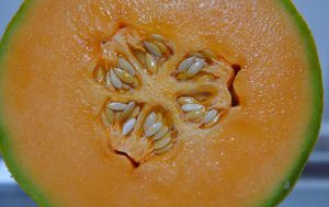 Rockmelon grower linked to listeria outbreak given 'all-clear'
