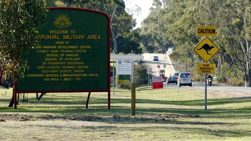 Victorian army base kangaroos clubbed to death