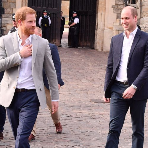 William and Harry Diana interview