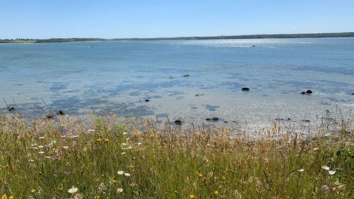 Now that it is fully open to the public, visitors are encouraged to access the island from the eastern shore.